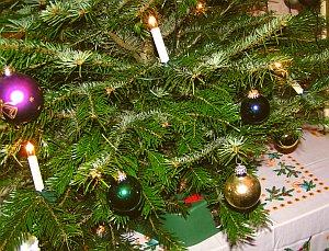 Ein friedliches Weihnachtsfest 2012 wuenscht www.michael-floessel.de