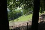 Bergtierpark-Erlenbach-www.michael-floessel.de-00011