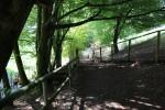 Bergtierpark-Erlenbach-www.michael-floessel.de-stg