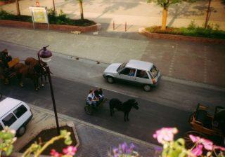 Die Ponys eben :-)